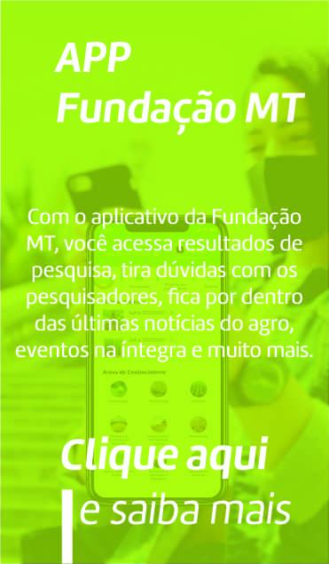card-image2-f03b22a8-b79c-44c8-b44d-5a424de72c9f