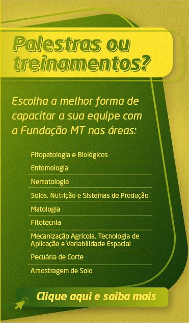 card-image1-300b2939-38e9-4010-9423-61b5bb46974a