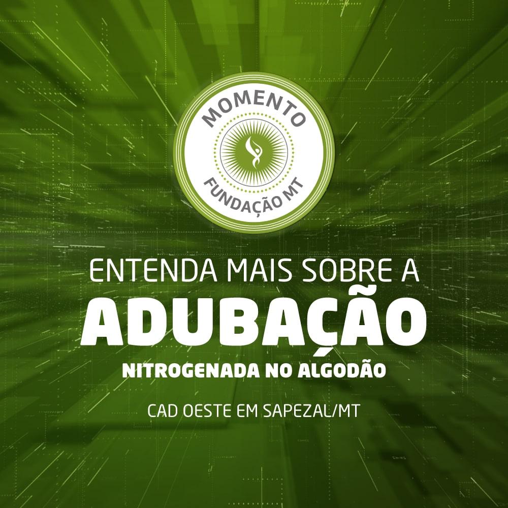Adubação nitrogenada na cultura do algodão em Mato Grosso